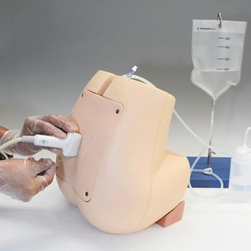 simulador de punção lombar e anestesia epidural guiado por ultrassom